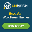 cssigniter