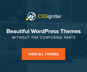 Premium WordPress Themes Without The Confusing Parts