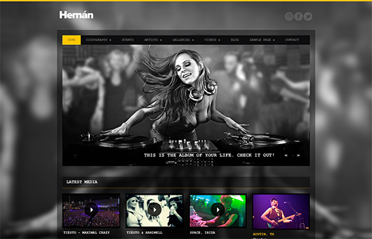 Screenshot of Music Theme for WordPress Hernan on Laptop