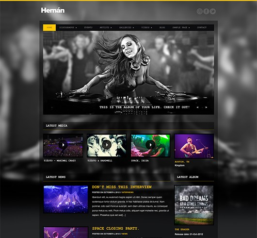 Screenshot of Music Theme for WordPress Hernan