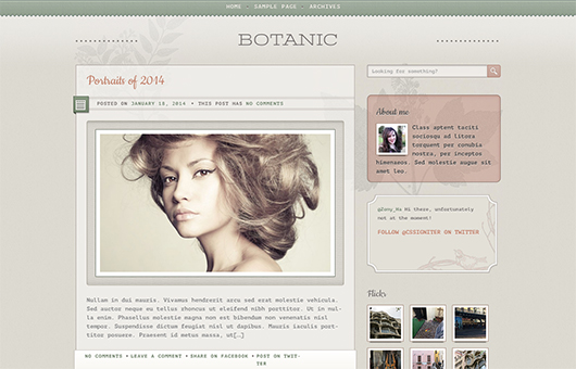 Screenshot of Blogging WordPress theme Botanic on Laptop