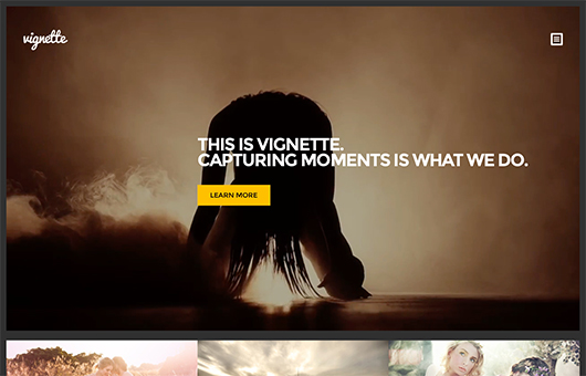 Screenshot of Photography WordPress Theme Vignette on Laptop