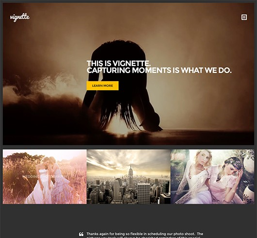 Screenshot of Photography WordPress Theme Vignette