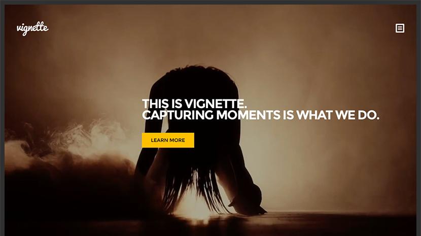 Screenshot of Photography WordPress Theme Vignette on Desktop