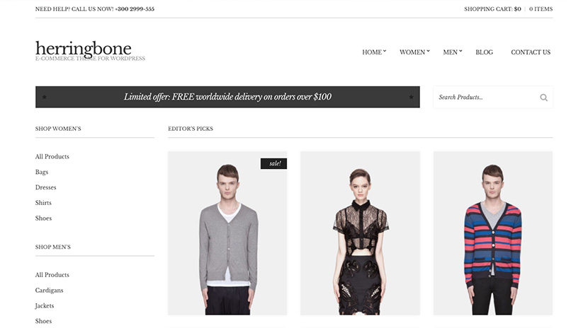 Top eCommerce Themes for your WordPress website