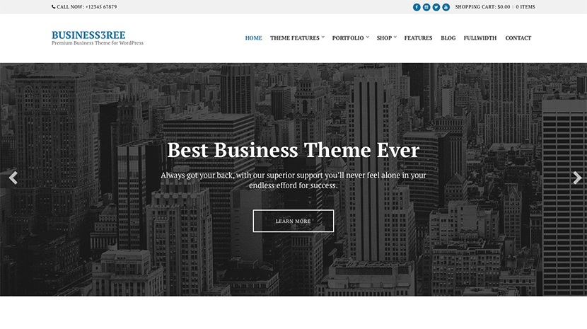 Screenshot of Business WordPress Theme Business3ree on Desktop