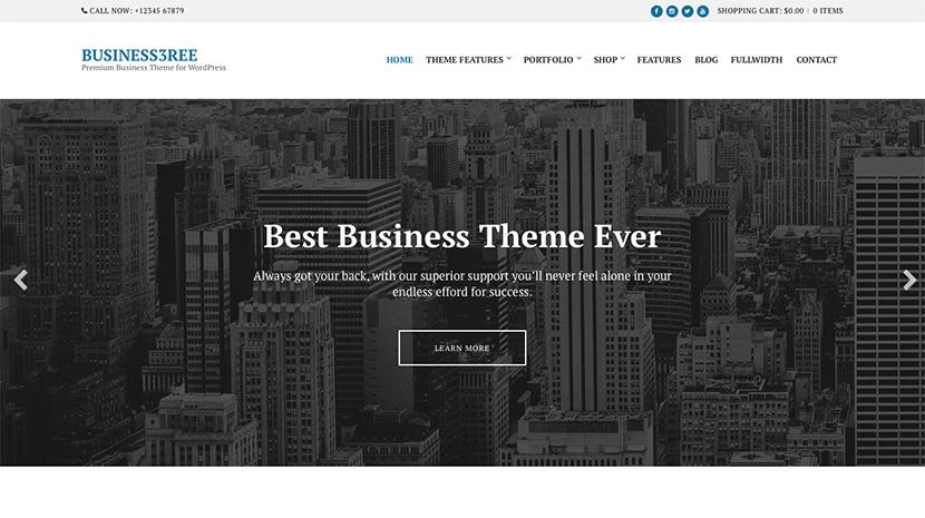 Screenshot of Business WordPress Theme Business3ree on Desktop