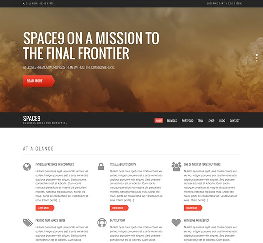 Screenshot of Business/WooCommerce theme for WordPress Space9