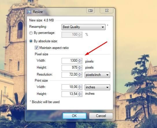 paintnet size change