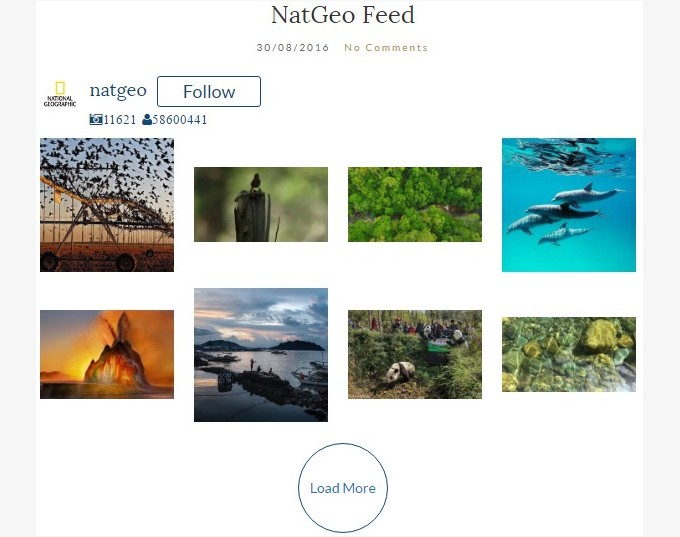 wd_natgeo_feed