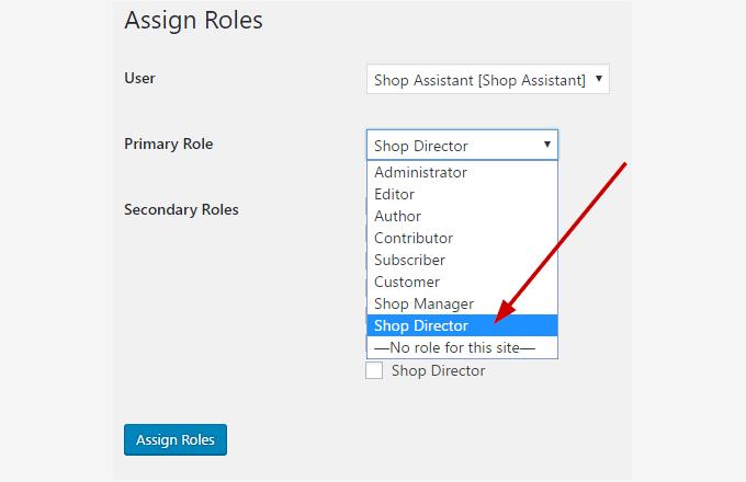 assign_director