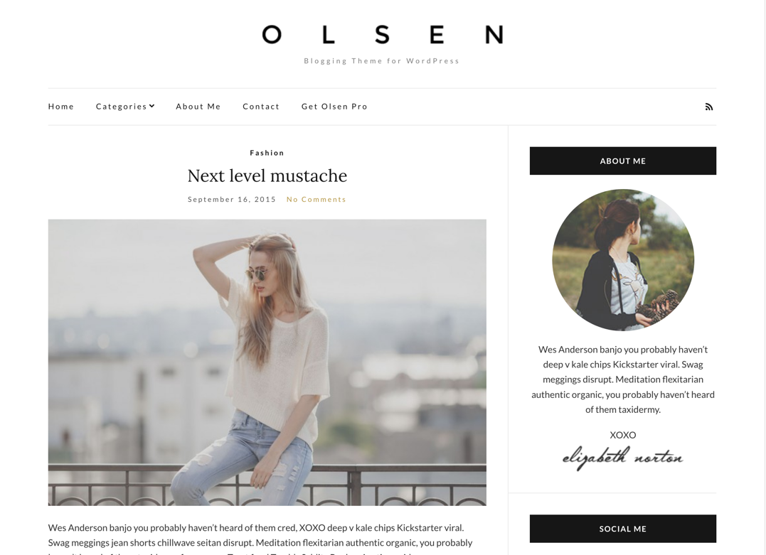 Screenshot of Olsen Light WordPress theme
