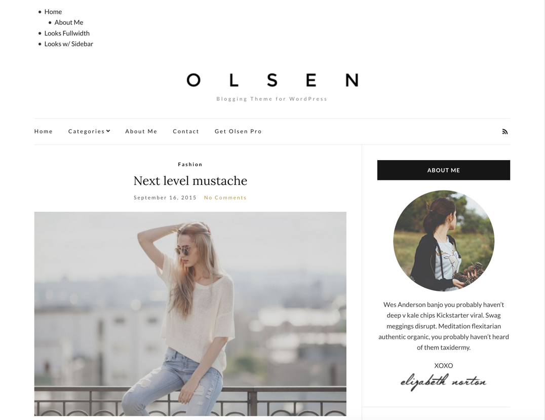 Screenshot of Olsen Light WordPress theme, with an unstyled menu.