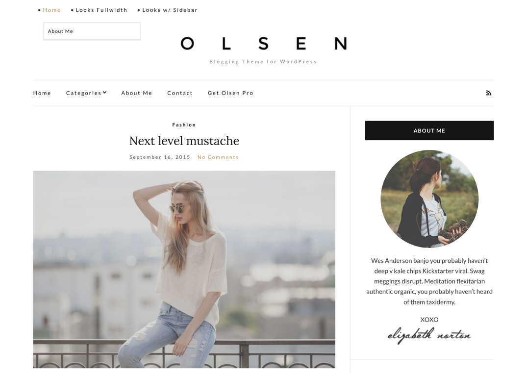 Screenshot of Olsen Light WordPress theme, with a styled menu and expanded sub-menu.