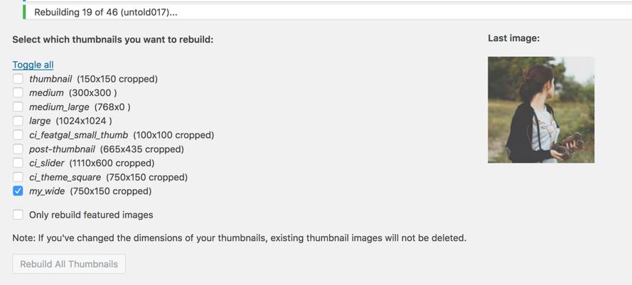 AJAX Thumbnail Rebuild plugin rebuilding 'my_wide' images