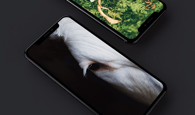 21 iPhone X, XS, XR Mockups You Can Download for Free